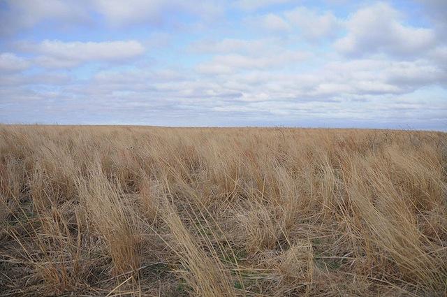 Image by FEMA - public domain, via Wikimedia Commons